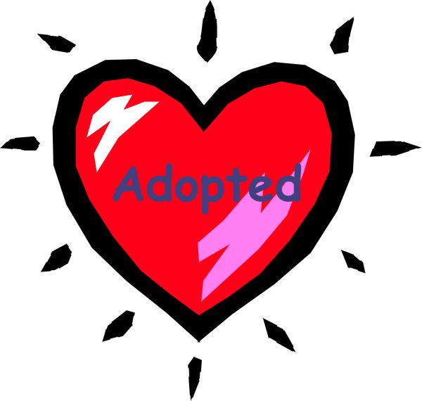 adopted pictures to pin on pinterest   pinsdaddy